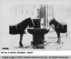 Two Horses at a Water Fountain