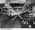 H. P. Wasson's Hosiery Department