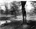 Golf Course on Michigan Road, 1931 (Bass #220758-F)