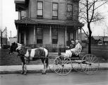 "Pony and wagon,""""Rogens Old Fashioned Bread,"" in front of residence, 1940 (Bass #246330-F)"