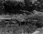 Estate of Nicholas H. Noyes, rock garden, 1935 (Bass #232027-F)