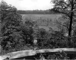 Estate of Nicholas H. Noyes, view of grounds, 1929 (Bass #212390-F)