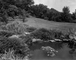 Estate of Nicholas H. Noyes, pond and grounds, 1935 (Bass #232019-F)