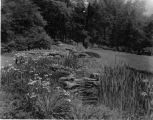 Estate of Nicholas H. Noyes, stream with blooming flowers in background, circa 1931 (no Bass #)