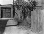 Scene behind Bass Photo Company building, trees and lane, 1934 (Bass #229799-F)