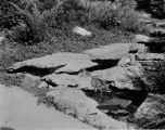 Estate of Nicholas H. Noyes, streambed with stones, circa 1931 (no Bass #)