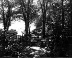 Estate of Nicholas H. Noyes, picnic area under trees, 1935 (Bass #232026-F)